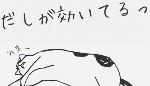 【2018年10月】料理教室のご案内【だしとうま味の料理教室|名古屋】